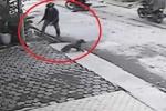 4 'cẩu tặc' giăng thòng lọng trộm chó bị chủ nhà xông ra truy đuổi