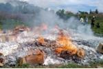 Tiêu hủy hàng chục nghìn gói thuốc lá nhập lậu ở Gia Lai