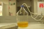 Video: Choáng với quy trình sản xuất gạch từ... nước tiểu người