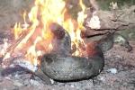 Video: Người dân tiêu hủy con trăn nghi siết chết người ở Đồng Nai