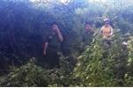 Bé gái 14 tuổi bị hiếp dâm, giết rồi giấu xác trong bụi cây: Đã bắt nghi phạm