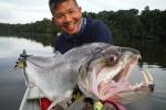 10 'thủy quái' đáng sợ nhất trên sông Amazon