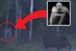 Clip: Phát hiện sinh vật bí ẩn cao gần 2m, giống quái vật trong phim 'Chúa nhẫn'