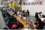 Giải mã lợi nhuận Agribank: 'Em út' hay 'anh cả' trong tứ trụ ngân hàng?