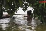 Video: Dân vùng lụt Hà Nội lội nước gần ngập đầu dồn rác bẩn ra ngoài