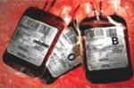 Thảm họa y tế Anh: Bị truyền máu nhiễm độc, 2.400 người tử vong