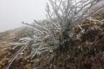 Mẫu Sơn chỉ rét 0,9 độ C, mưa lớn diện rộng bao trùm Trung Bộ và Nam Bộ