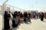 IS hành quyết dã man hàng chục người ở Iraq