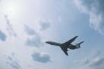 Máy bay Tu-154 Nga rơi trên Biển Đen: Có thể do chim