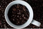 Khó tin: Dùng cà phê thay xăng chạy ô tô, xe máy