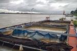 Các hộ nuôi cá lồng tại Thanh Thủy thiệt hại nặng nề do thủy điện xả đáy