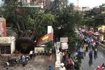 Bão số 4 sắp đổ bộ, Hà Nội mưa to gió giật khủng khiếp, cây đa cổ thụ bật gốc đè bẹp cửa hàng