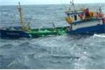 Gửi văn bản khẩn cấp đề nghị Malaysia cho ngư dân Bình Định tránh bão số 15