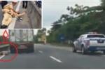 Chiến sỹ bám đầu container bị hất văng xuống đường: Lãnh đạo phòng CSGT nói gì?