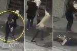 Đi trên phố bị chó rơi trúng đầu, liệt từ cổ trở xuống