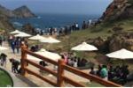 Các quần thể nghỉ dưỡng FLC 'cháy phòng' dịp Tết Mậu Tuất 2018 với hàng vạn lượt khách
