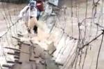 Video: Rùng mình xem cảnh nước lũ xiết đuổi theo dân đang qua cầu ở Lâm Đồng
