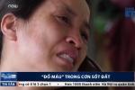 Quay cuồng, đổ máu, 'huynh đệ tương tàn' trong cơn sốt đất ở Vân Đồn - Quảng Ninh