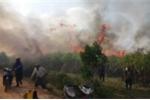Điều tra vụ 100 ha mía sắp thu hoạch bị cháy rụi ở Đắk Lắk