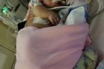 Được người nhà ôm hôn, em bé nhiễm virus viêm phổi