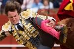 Clip: Hãi hùng khoảnh khắc bò tót húc thủng đùi đấu sỹ