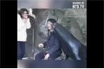 Cười vỡ bụng clip hải cẩu thơm má du khách khi chụp ảnh