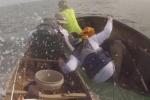 Cá mập khổng lồ tấn công liên hoàn, suýt húc lật xuồng ngư dân