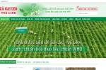 Cuc ATTP canh bao hang loat website vi pham quang cao Giai doc gan Tue Linh hinh anh 2