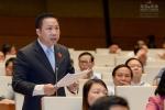 Đại biểu Quốc hội: Đề nghị Thủ tướng đình chỉ ngay cán bộ thăng tiến thần tốc, nâng đỡ không trong sáng