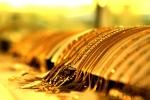 Giá vàng hôm nay 22/3: Bất ngờ tăng vọt sau những ngày giảm thê thảm