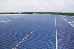 Lễ khánh thành nhà máy điện mặt trời 35MW đầu tiên tại Việt Nam