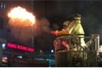 Clip: Cảnh sát TP.HCM cầm đuốc tẩm dầu phá tổ ong trên cây trong đêm
