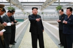 Kim Jong-un 'nổi đóa' vì trang trại rùa không có tôm hùm