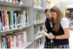 Sơ đồ hệ thống giáo dục mới: Theo chuẩn Tú tài quốc tế