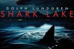 Trailer phim 'Săn cá mập'