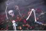 Sốc với những đồ vật kỳ quái đào được trong vườn nhà