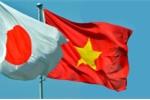 Đại sứ Umeda Kunio: 'Việt Nam và Nhật Bản có chung mục tiêu chiến lược'