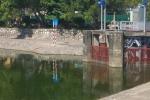 Phát hiện thi thể người đàn ông nổi trên hồ Thành Công, Hà Nội