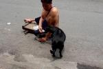 Clip: Chú chó cưng phụ giúp ông chủ tàn tật bán vé số gây bão mạng