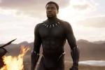 Bat ngo Oscar 2019: Black Panther va Bohemian Rhapsody lap cu dup, Green Book thang lon hinh anh 1