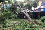 Một phụ nữ bị mái tôn đè chết trong cơn bão số 2