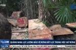 Lâm tặc 'thảm sát' rừng Quảng Nam: Bảo vệ rừng không hay biết