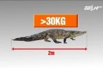 Bắt được cá sấu nặng 30kg trên sông ở Hà Nội: Thông tin mới bất ngờ