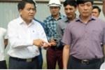 Bất cập trong việc chặt cây xanh trên đường Phạm Văn Đồng