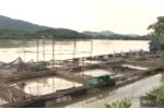 Thủy điện Hòa Bình xả lũ: Dân nuôi cá lồng lại trắng tay