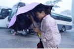 Dự báo thời tiết hôm nay 15/8: Miền Bắc mưa to, miền Trung nắng nóng