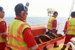 Tàu cá chìm trên biển Vũng Tàu: Cứu sống 1 thuyền viên
