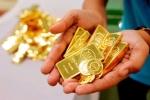 Giá vàng hôm nay 16/8: Có nên đầu tư vàng trong thời điểm này?