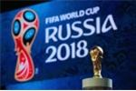 Một tập đoàn tài trợ miễn phí VTV 5 triệu USD mua bản quyền World Cup