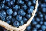 Nghiên cứu mới: Ăn uống thực sự có thể cải thiện tâm trạng con người